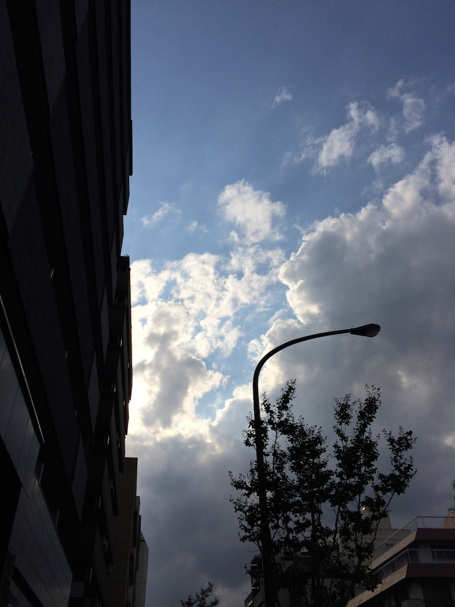 日々、東京。代官山、神保町とか