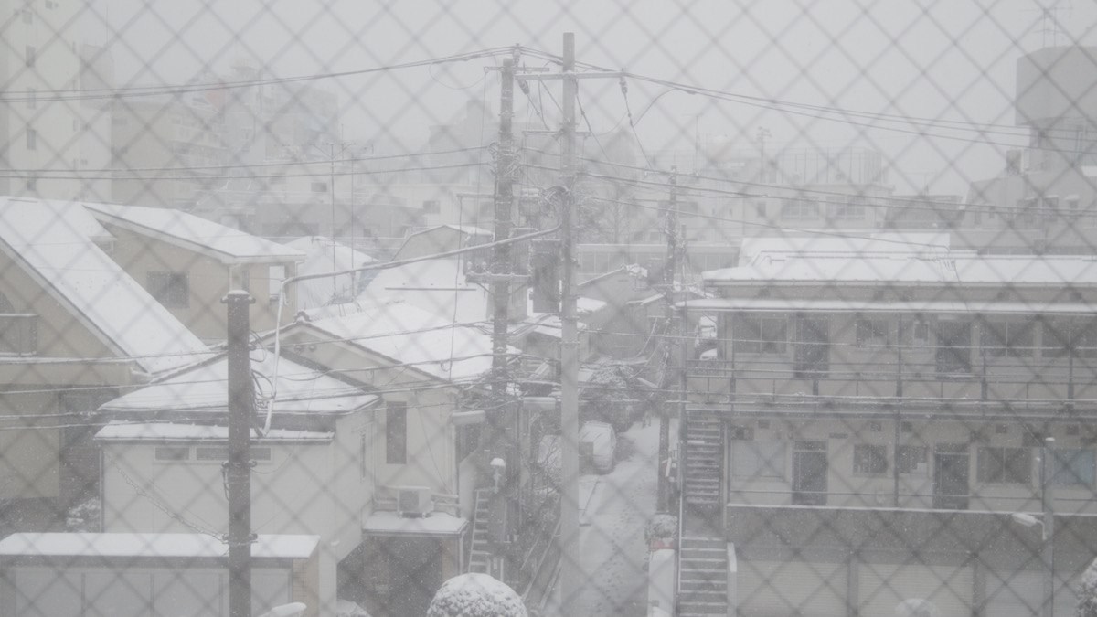 東京、雪。
