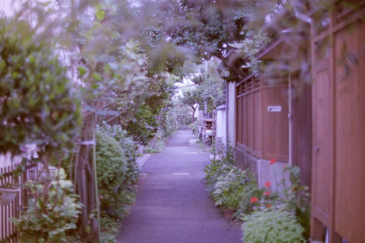 新潟、film photograph.